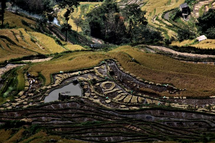 China - Yunnan 160 - Yuanyang