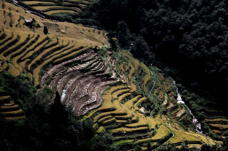 China - Yunnan 163 - Yuanyang