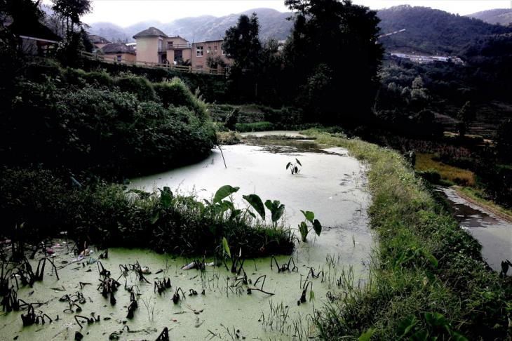 China - Yunnan 176 - Yuanyang - Hani village