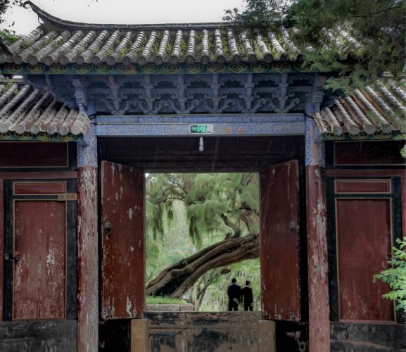 China - Yunnan 253 - Baisha