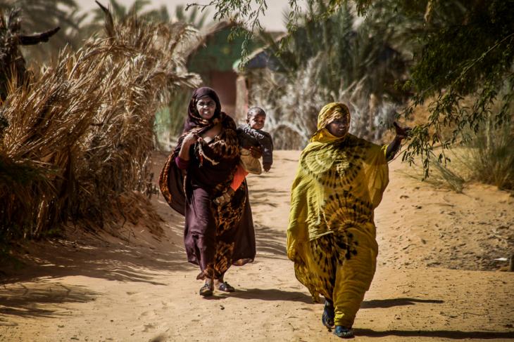 Mauritania - Tanichert oasis 013