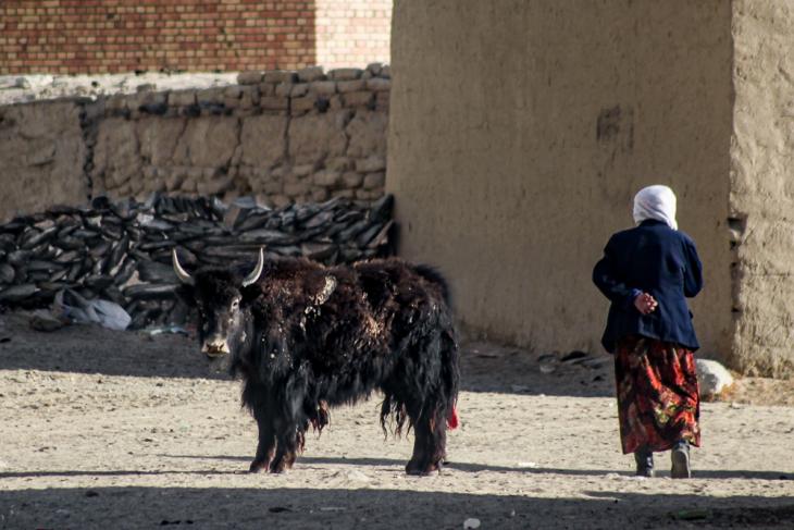 China - Xinjiang 493 - Pamir