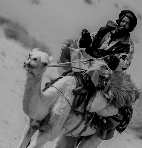 Mauritania - Tanichert oasis 046