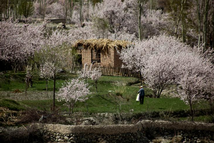 China - Xinjiang 524 - Pamir