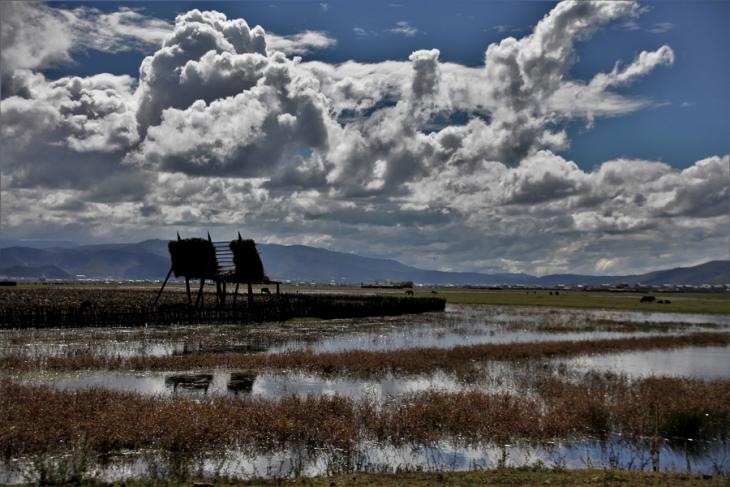 China - Yunnan 477 - Napa Lake - Shangri La area