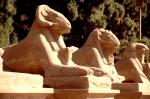 Egypt - Luxor 018 - Karnak