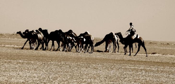 Mauritania 001 - Sahara crossing