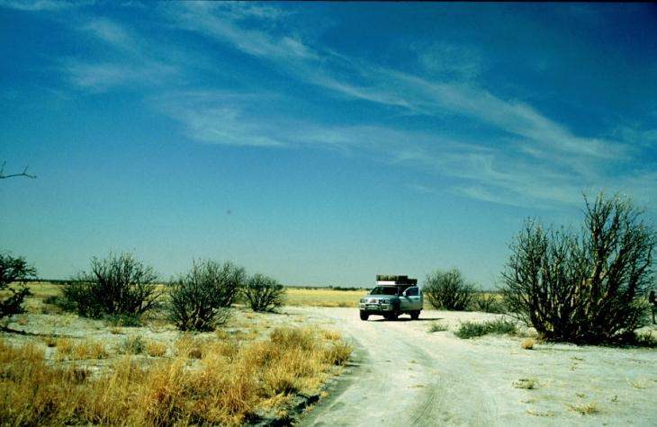 Botswana - Kalahari 26