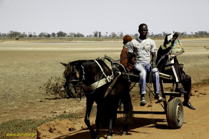 Senegal - Joal-Fadiouth 002 - Joal surroundings