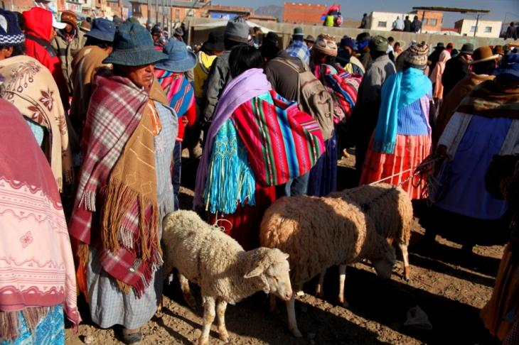 Bolivia - Itinerary La Paz-Sajama-Coipasa 002 / Patacamaya Sunday market
