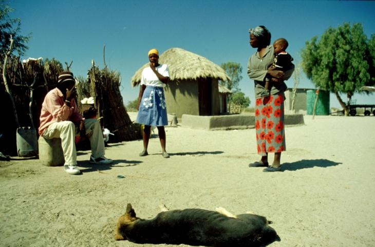 Botswana - Kalahari 03