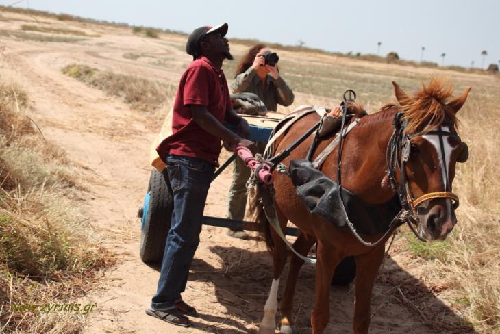 Senegal - Joal-Fadiouth 003 - Joal surroundings