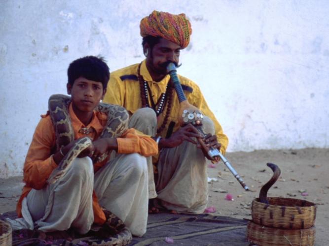 India - Pushkar 04