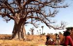 Senegal - Joal-Fadiouth 004 - Joal surroundings