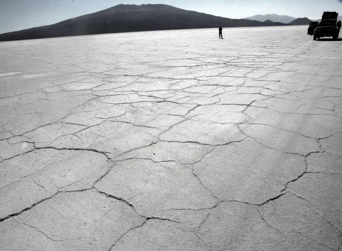 Bolivia 009 - Salar de Coipasa
