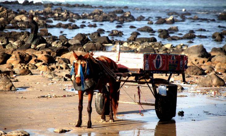 Senegal - Dakar 009