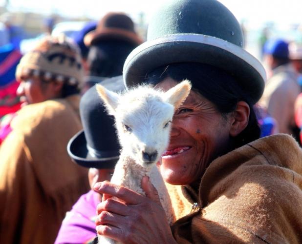Bolivia - Itinerary La Paz-Sajama-Coipasa 011 / Patacamaya Sunday market