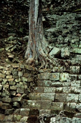 Honduras - Ruinas de Copan 012
