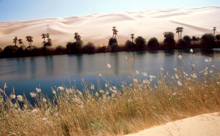 Libya - Sahara desert 014 - Oum El Ma