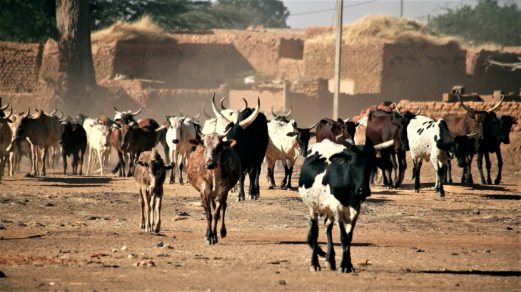 Burkina Faso - Djibo 016
