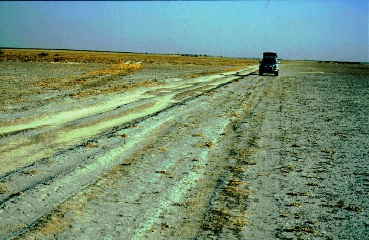 Botswana - Kalahari 17