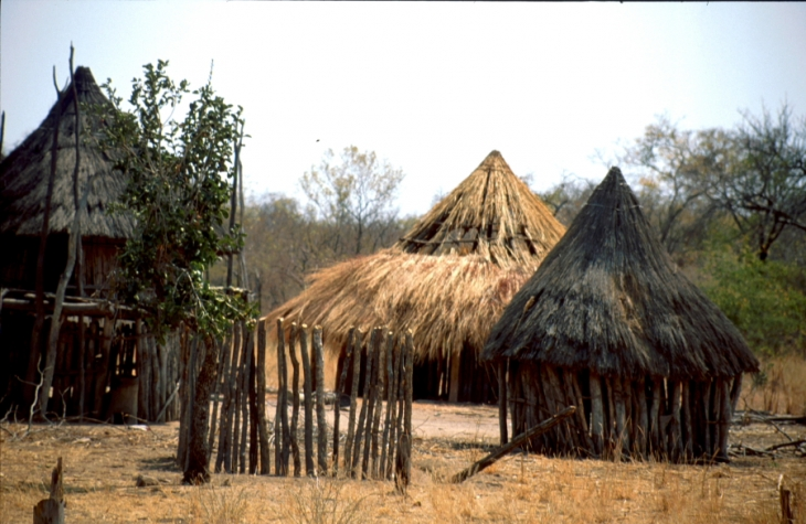 Zimbabwe - Tonga 018