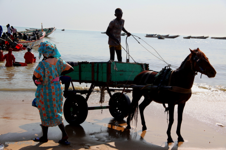 Senegal - M'bour 018