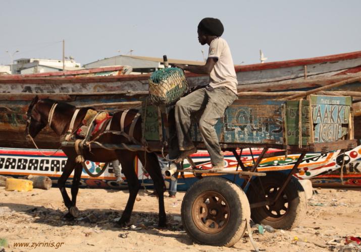 Senegal - M'bour 022