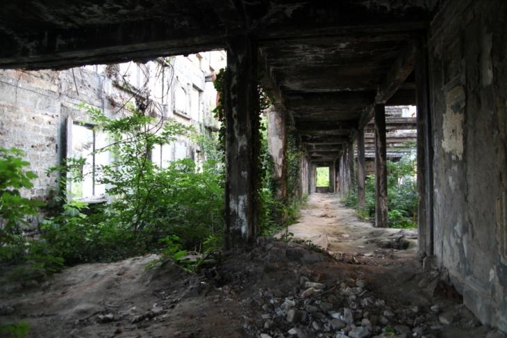 Abkhazia - Sukhumi 039