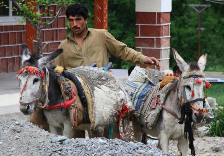 Pakistan - Kalash 039 - Bumburet valley