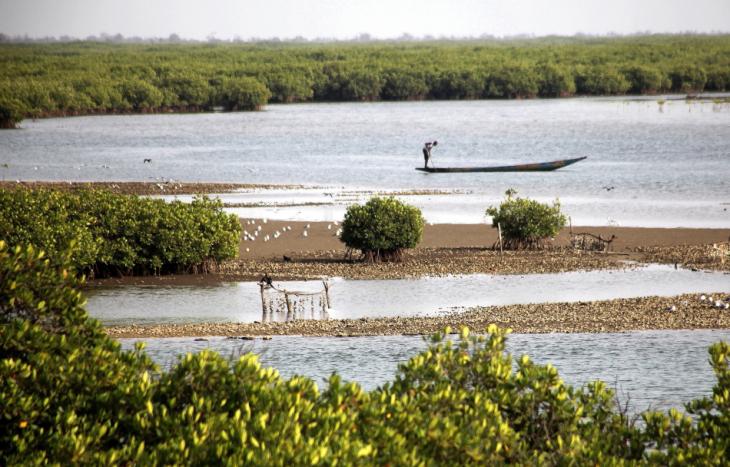 Senegal - Joal-Fadiouth 041 - Fadiouth