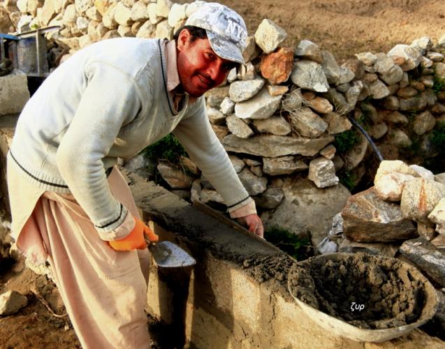Pakistan - Duiker 041