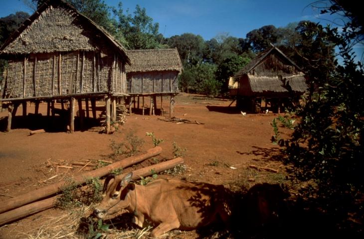Cambodia - Ratanakiri 043