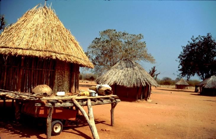 Zimbabwe - Tonga 044