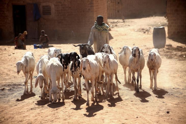 Burkina Faso - Djibo 044