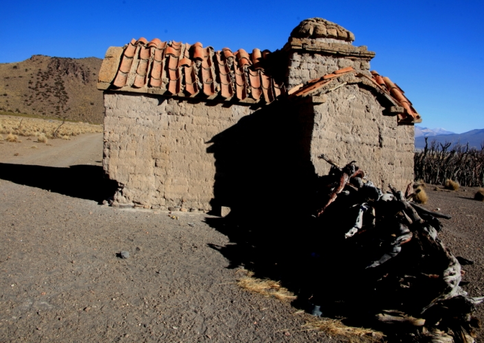 Bolivia - Itinerary La Paz-Sajama-Coipasa 045 / Around Sajama