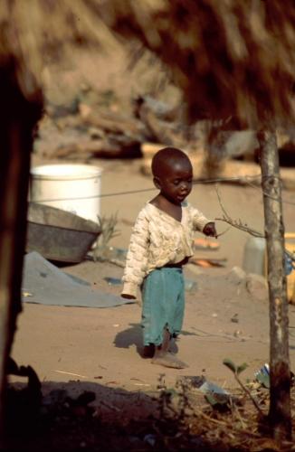 Zimbabwe - Tonga 047