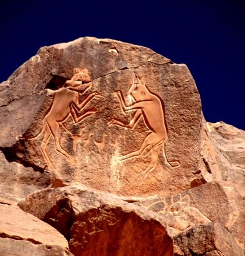Libya - Sahara desert 052