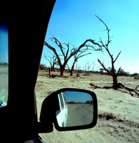 Botswana - Kalahari 76