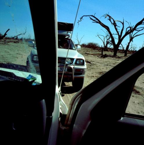 Botswana - Kalahari 78