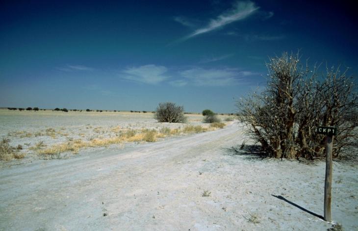 Botswana - Kalahari 65