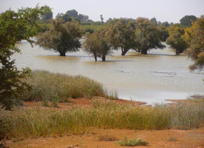 Burkina Faso - On the road to Ouagadougou 064