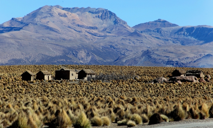 Bolivia - Itinerary La Paz-Sajama-Coipasa 065 / Around Sajama