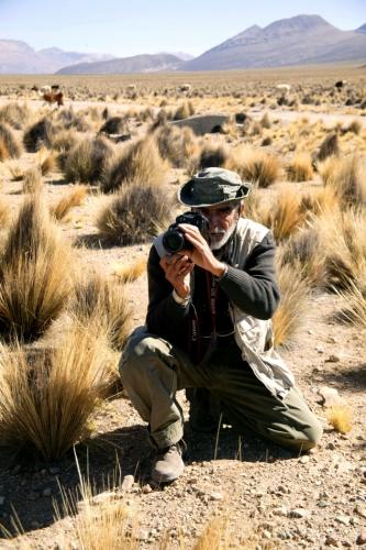 Bolivia - Itinerary La Paz-Sajama-Coipasa 067 / Around Sajama