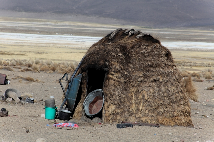 Bolivia - Itinerary La Paz-Sajama-Coipasa 068 / Around Sajama