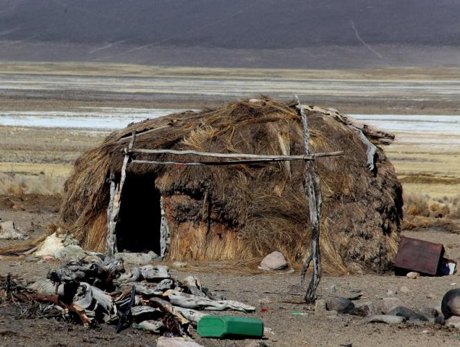 Bolivia - Itinerary La Paz-Sajama-Coipasa 069 / Around Sajama