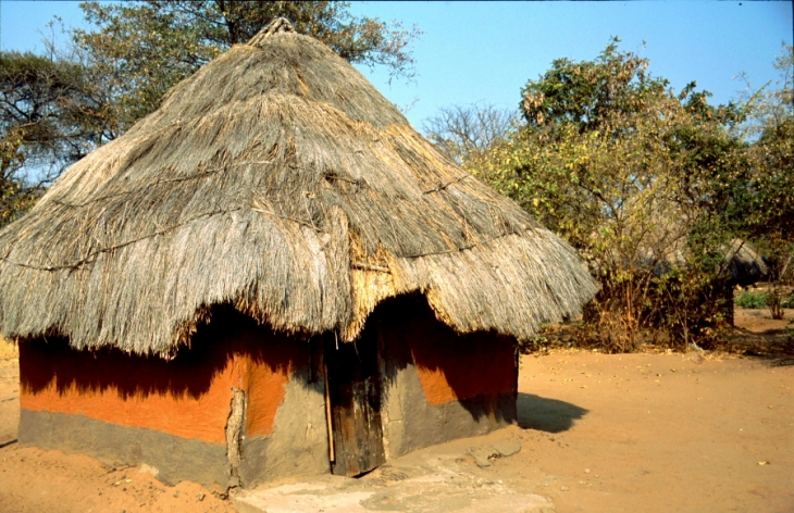 Zimbabwe - Tonga 070