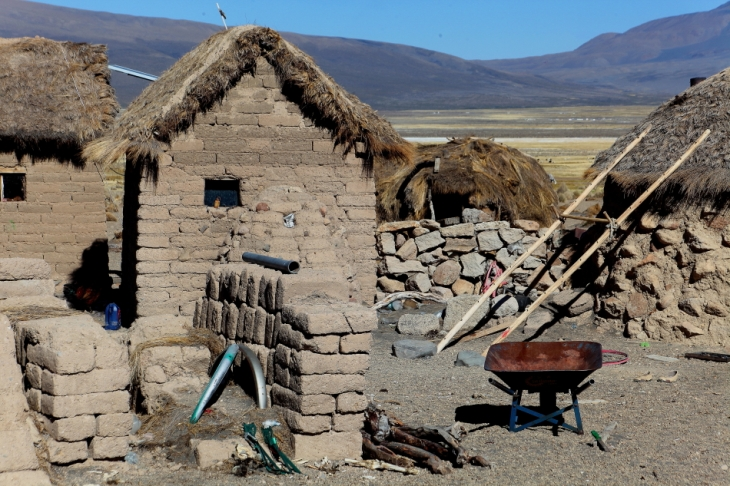 Bolivia - Itinerary La Paz-Sajama-Coipasa 070 / Around Sajama