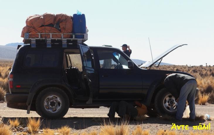 Bolivia - Itinerary La Paz-Sajama-Coipasa 076 / Around Sajama