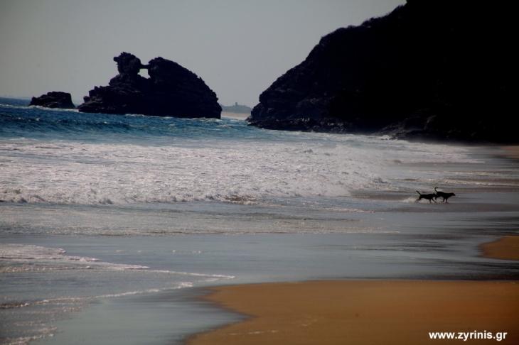Mexico - El Pacifico 046 - Mermejita